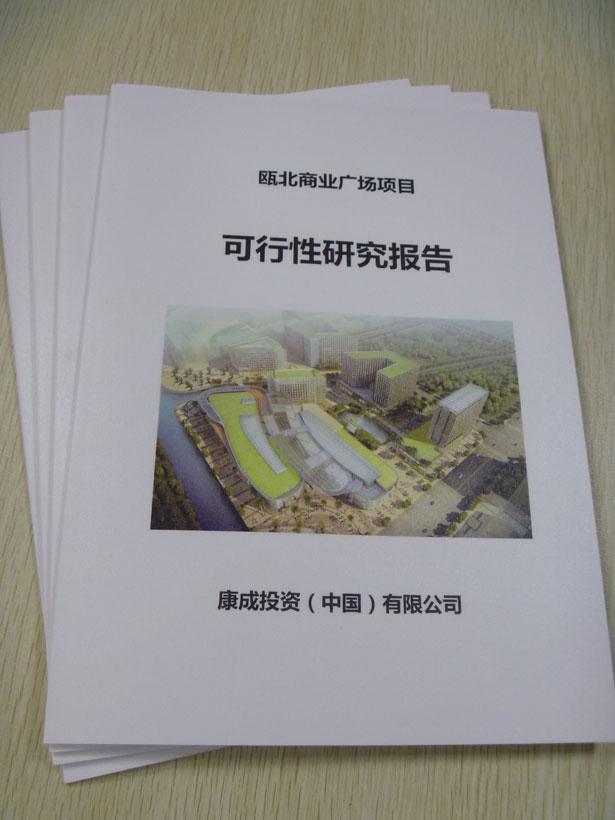 可行性报告翻译案例