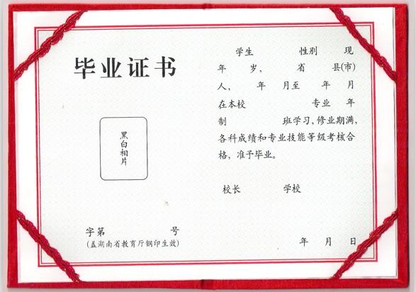 毕业证书翻译案例