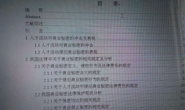 法律论文翻译案例