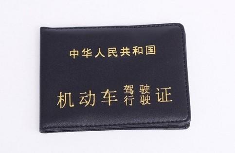 驾驶证翻译案例