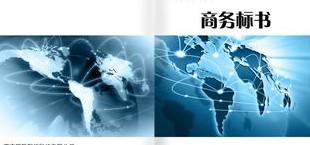 商务标书翻译案例
