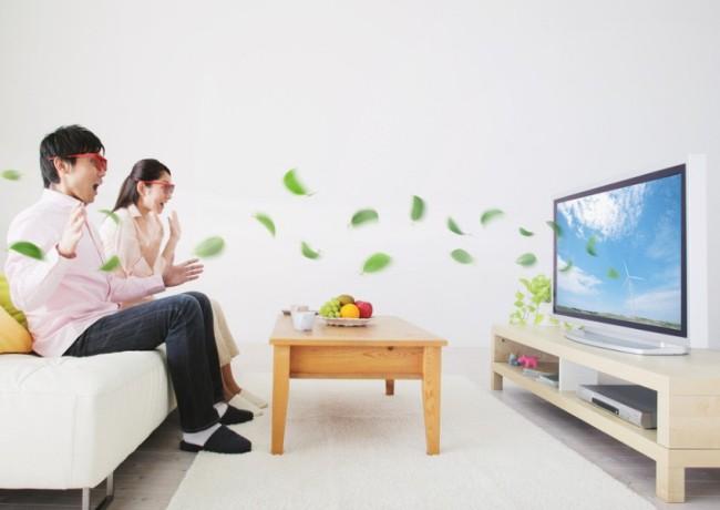 电视广告翻译案例